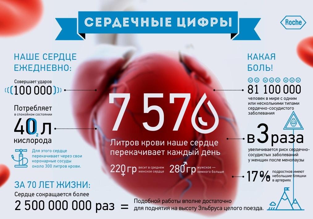 сколько стоит инфографика